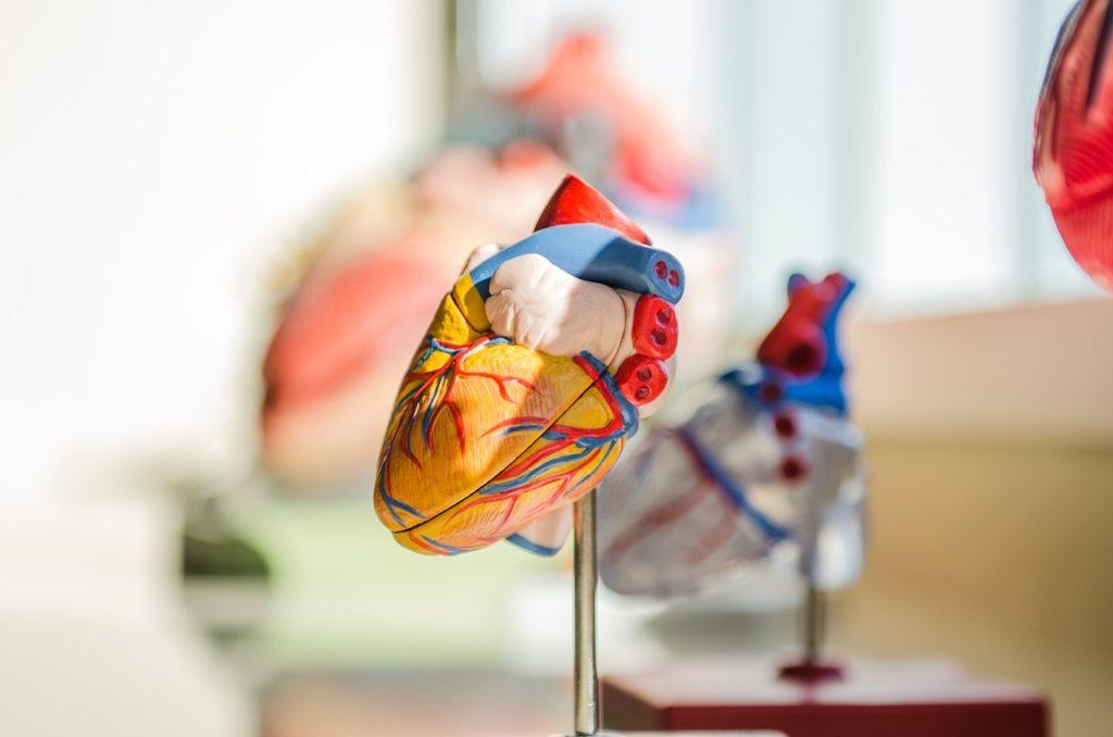 Kardiolog w Evi-med w Gdyni